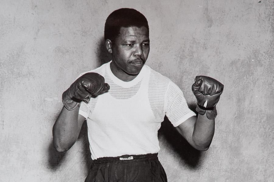 Vom Boxer Zum Gärtner Nelson Mandela Ernst Zerche